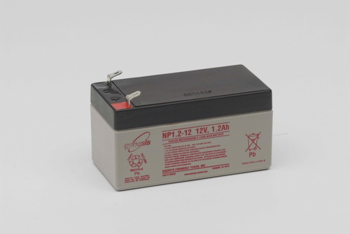 Batteries Rechargeables H NP1.2-12